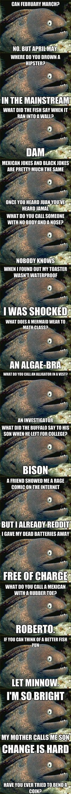 The Best of Bad Joke Eel/ puns for Ellie :)// almost all of these made me facepalm. That's how you know it's a good bad pun!