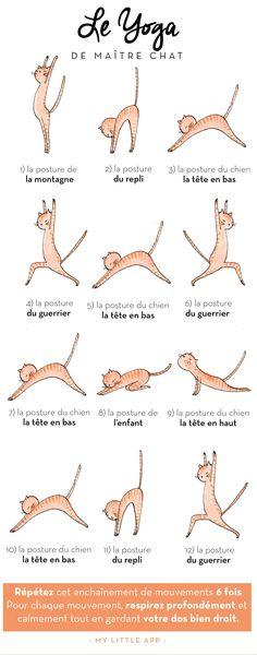 #yoga #cat #mylittleapp