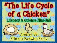 The Life Cycle of a Chicken Mini-Unit