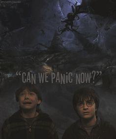 Harry Potter & the C.O.S.