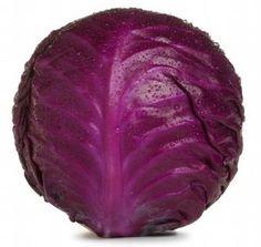, Find Complete Details about Fresh Vegetables - Cabbage.,Fresh Vegetables Of Indian Origin from Fresh Cabbages Supplier or Manufacturer-GTR OVERSEAS Red Cabbage With Apples, Cabbage Rice, Red Cabbage Salad, Braised Red Cabbage, Purple Cabbage, Cabbage Patch, Purple Food, Purple Stuff, Purple Things