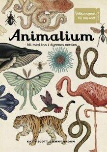 Animalium av Katie Scott og Jenny Broom (Innbundet)