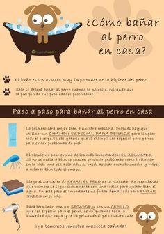 Baño para perros