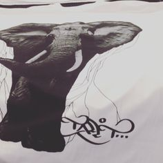 Blastin @talltproductions today had to post this banger #elephant #nature #screenprint #fashion #apparel #screenprinting #art #lifestyle #brand #culture #denver #superiorink #talltproductions