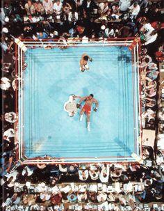 Neil Leifer ~ Muhammad Ali defeats George Foreman in Kinshasa 139797333