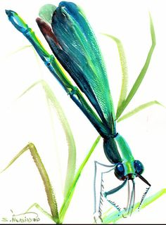 Dragonfly, original watercolor painting, portrait orientation vertical, 12 X 9 in, green blue, bugs, animal art, dragonfly art