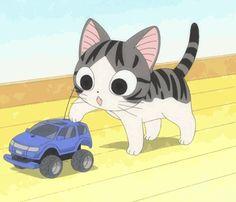 Chi'S sweet home Kawaii Cat, Kawaii Anime, Gifs, Pusheen, I Love Cats, Crazy Cats, Chi Le Chat, Chi's Sweet Home, Cute Cat Names