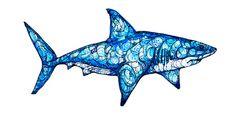 Shark Art Print - Kate Fitzpatrick. Just For Kids Dental - pediatric dentist in McKinney, TX @ pediatricdentistmckinney.com
