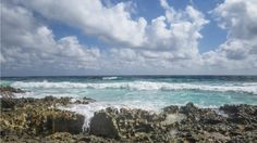 The #wind tonight in #Toronto reminds me of when I was here at the #ocean in #Cozumel. So soothing. Sweet Dreams
