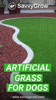 Dog Friendly Backyard, Dog Backyard, No Grass Backyard, Backyard Landscaping, Artificial Grass For Dogs, Artificial Turf, Fake Grass, No Grass Yard, Low Maintenance Backyard