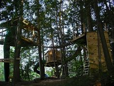 Coolest Tree house for kids