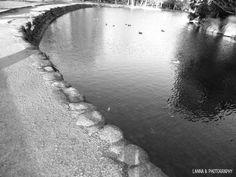 Masterton Park, NZ