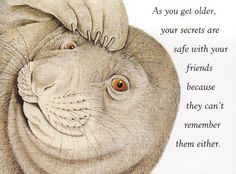 Cute sayings, animals, friends, artworks, animal quotes, auckland, thought, getting older, memories
