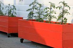 Hjemmesnekrede blomsterkasser, på hjul, malt i min favoritt rødfarge (Lady interiør; kode S1580-Y90R ). Passer perfekt til en hvitmalt h...