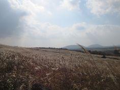 Jeju Sangumburi Crater
