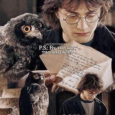 Like and share this pure awesomeness! #HarryPotter #Harry_Potter #HarryPotterForever #Potterhead #harrypotterfan #jkrowling #HP