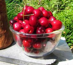 Euras | Zdravăn Cherry, Paradis, Black Magic, Food, Plant, Essen, Meals, Prunus, Yemek