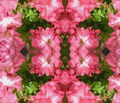 Petunias fabric by susaninparis on Spoonflower - custom fabric