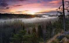 sunrise landscapes nature trees dawn forests hills fog mist finland photography