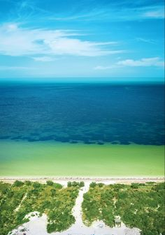 Our Beach in Yucatan, Mexico:  ✅ no rocks ✅ no coral ✅ shallow water perfect for kids & swimming ✅ calm warm water ✅ plenty of space for your jet ski and boat ✅ no one will bother you! ✅ located minutes from the marina where you can fish daily or have fresh catch of the day brought to your condo!   Please share if you know someone who is interested in a lifestyle like this with condo prices from under $180k 🌴  #yucatan #mexico #beach #condo #realestate Beach Village, Ocean Front Property, Living In Mexico, Beach Properties, Rooftop Terrace, Beach Condo, Us Beaches, Jet Ski, Kids Swimming