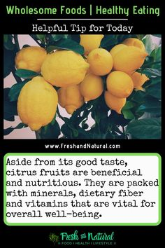 There are many reason to eat lemons... eating healthy- tip for today... #HealthyEating #CleanFoods #lemons #benefitsofeatinglemons #vegetables #rawfoods #alternativemedicine #naturalhealth #naturalremedies #healthfoods #healthyfoods #naturalfoods #organicfoods #farmersmarket #healingteas #nutrition #greenliving #sustainableliving #sustainability #wholisticliving #naturalhealing #herbalhealing #citrusfruits #lemonhealthbenefits Clean Recipes, Organic Recipes, Raw Food Recipes, Eating Healthy, Healthy Tips, Eating Raw Garlic, Benefits Of Eating Avocado, Eating Lemons, Fruits And Veggies