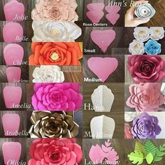 Paper flower shapes