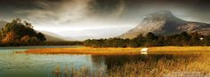 Nature view timeline cover, Nature timeline cover banner