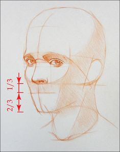 How to Draw a Portrait in Three Quarter View, Part 7