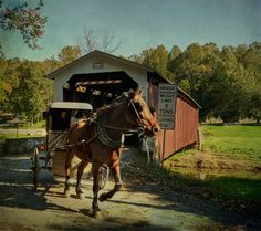 Lancaster, Pennsylvania covered bridge, complete with horse and carriage