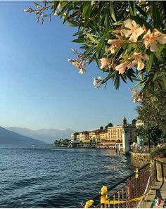 Bellagio (comuna italiana), Lago de Como, Como, Lombardia, Itália