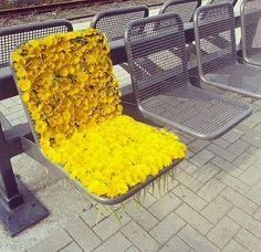 Chrysanthemum Chair