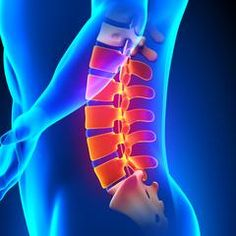 lumbar spine anatomy easyflexibility injury prevention back pain vertebrae