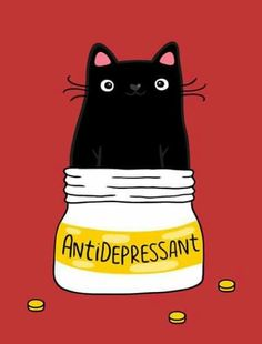 Cat antidepressant