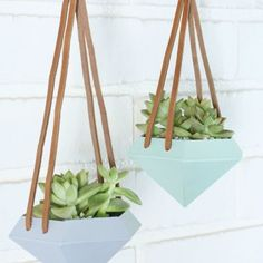 Bilderesultat for diy hanging plant