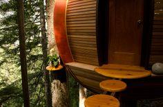 The HemLoft - a beautiful egg-shaped treehouse   Heidi and Joel Allen
