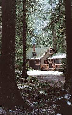 honestly, a dream woodland home!!!