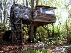 Recycled treehouse