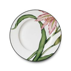 Camelia dinnerware has a graphic floral design in cheerful pinks and greens. Hand-painted on bone china, Camelia is sure to become a family heirloom. Porcelain Dinnerware, Porcelain Ceramics, Pottery Painting, Ceramic Painting, Ceramic Plates, Ceramic Pottery, Glass Fusing Projects, Baccarat Crystal, China Painting