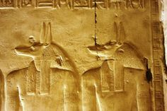temple of seti 1 abydos Anubis, Ancient Egypt, Trip Advisor, Temple, Connection, Painting, Art, Art Background, Temples