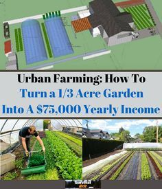 Urban Farming How to Turn a 13 Acre Garden into a 75000 Yearly Income with a LOT of hard work Hydroponic Gardening, Organic Gardening, Gardening Tips, Urban Gardening, The Farm, Small Farm, Permaculture, Thing 1, Urban Homesteading