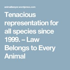 Tenacious representation for all species since 1999. – Law Belongs to Every Animal
