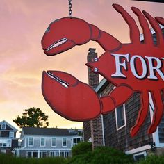 lobster in new england | Ford's, Noank CT