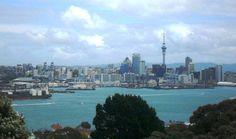 Summer Wind in Auckland