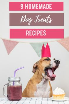 We all want to make sure our dogs get the best & these homemade dog treats recipes ensure your pup is eating healthy, natural ingredients. #dogtreats #dogtreatsrecipes Diy Dog Treats, Homemade Dog Treats, Dog Treat Recipes, Dog Food Recipes, Animal Nutrition, Pet Nutrition, Frozen Dog, Dog Lover Gifts, Pet Lovers
