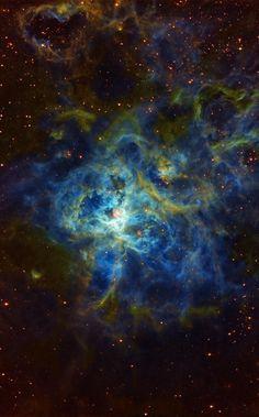 NGC 2070 - Tarantula nebula - 30 Doradus The Tarantula Nebula is an H II region in the Large Magellanic Cloud. It was originally thought to be a star, but in 1751 Nicolas Louis de Lacaille recognized its nebular nature. The Tarantula Nebula has an...