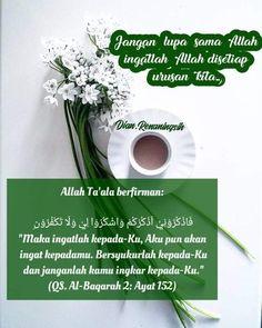 Islamic Quotes, Quran, Allah, Herbs, Muslim, Motivational, Study, Beauty, Studio