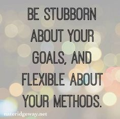 Be Stubborn about your Goals, and Flexible about your Methods!