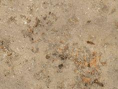 HB leszavazva forest stone jura 3436