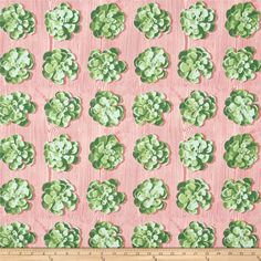 Joel Dewberry Cali Mod Home Decor Sateen Twill Succulents Cacutus from @fabricdotcom  Screen printed on cotton sateen; this medium weight twill fabric designed by Joel Dewberry has no significant sheen and is very versatile. This fabric is perfect for dresses, skirts, window treatments (draperies, valances, curtains, and swags), bed skirts, duvet covers, pillow shams, accent pillows, tote bags, aprons, slipcovers, upholstery, skirts and dresses. Colors include shades of pink and shades of…