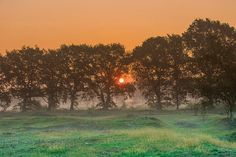 Sunrise at Balloërveld in the province of Drenthe in The Netherlands